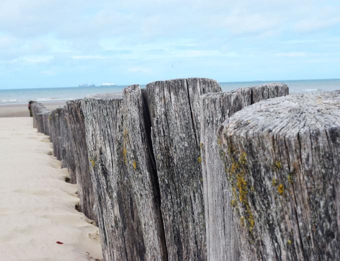 poteaux-bois-sur-la-plage-de-calais