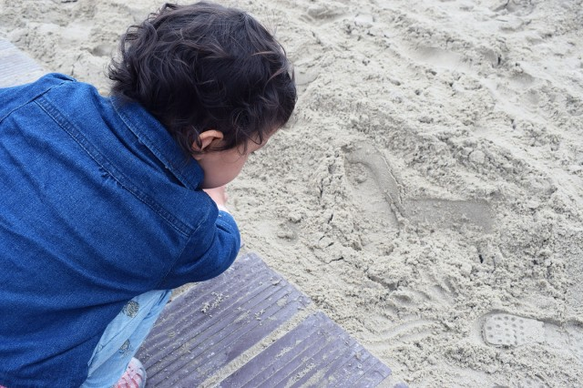 la linette accroupie plage du touquet
