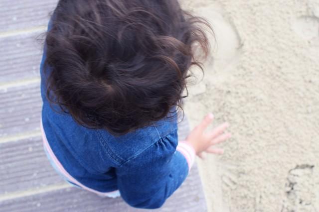 la linette dans le vent de la plage du touquet
