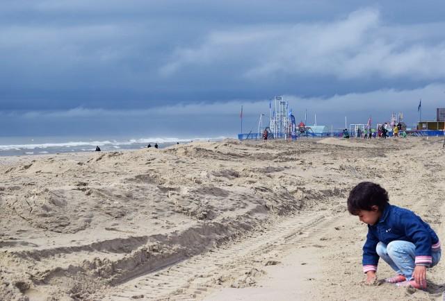 la linette sur le sable du touquet
