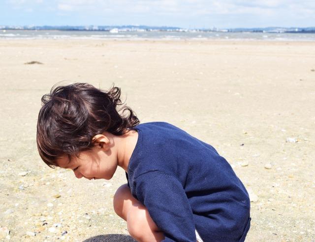 la linette sur la plage de honfleur 1