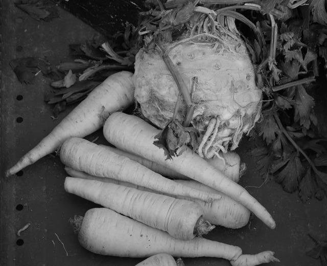 légumes automne noir et blanc