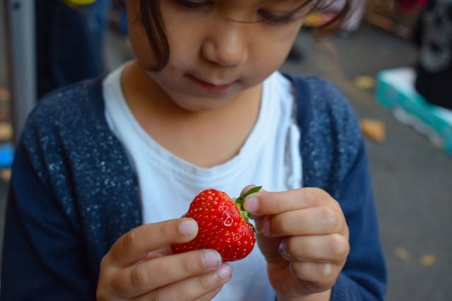 lina mange une fraise